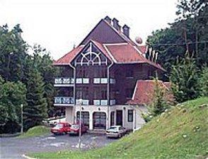 Ezüstfenyő Hotel   *** szálláshely